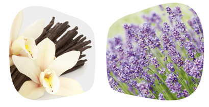 Lavendel Vanille